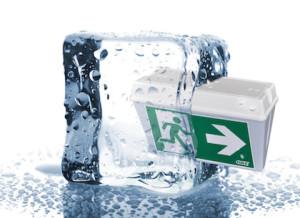 IZAR-ice